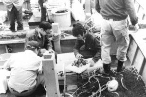 発表内容「閑漁期対策における貝けた漁業総合管理」(貝けたの対象魚種、バチ赤貝の記録をとる青壮年部員)